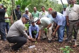 Instituciones reforestarán 67 mil tareas en Loma de Blanco con 14 millones de plantas
